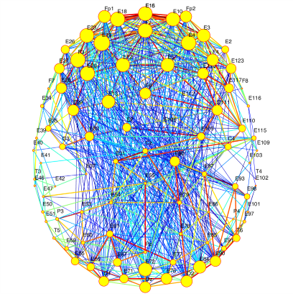 Process Based Therapy - Network